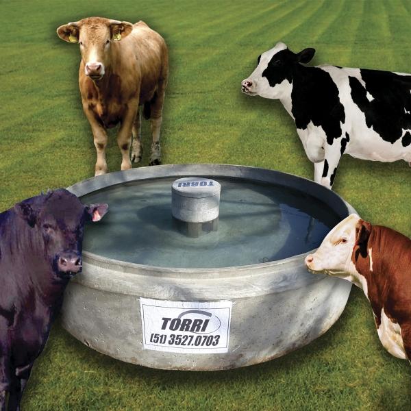 Bebedouro para animais